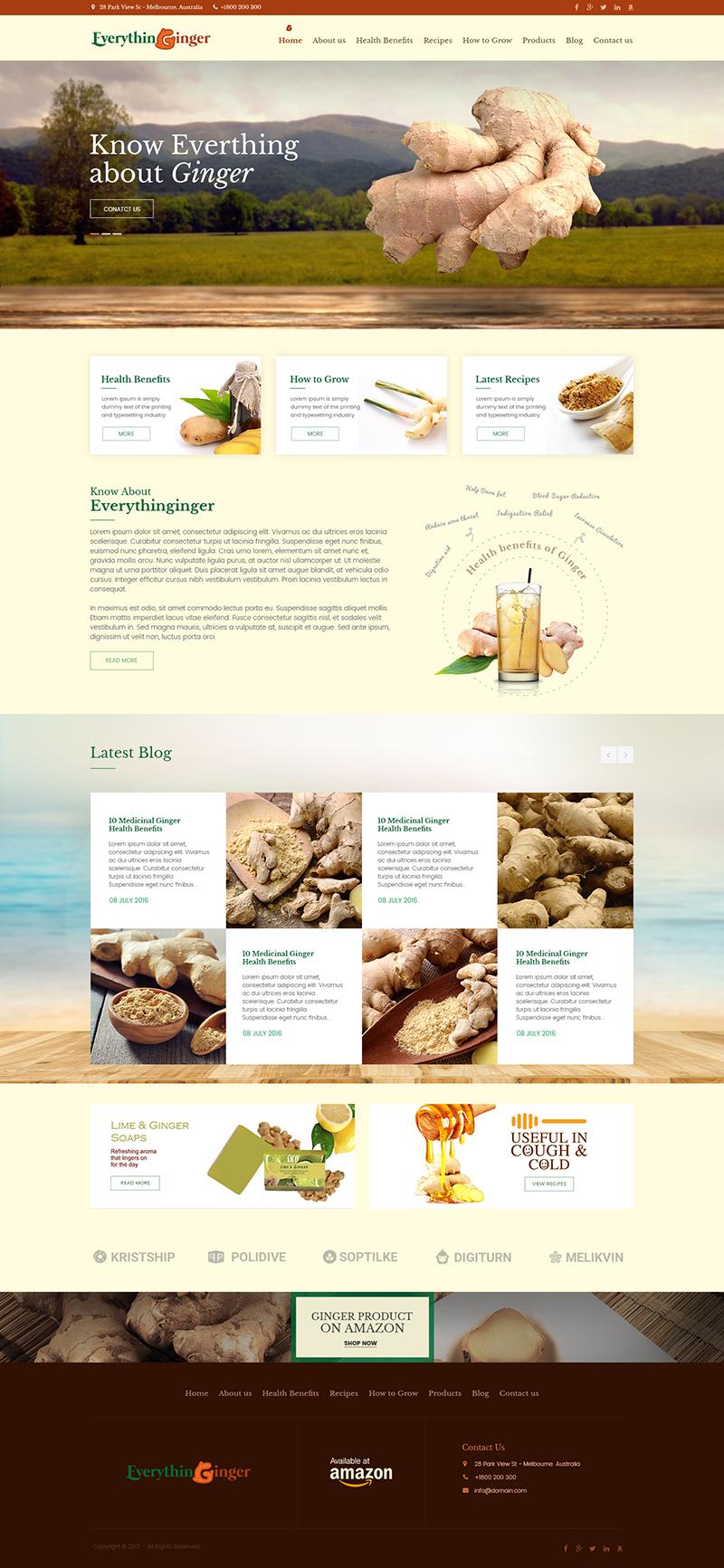 Custom Website Design for Everythin Ginger - Logo Design Deck